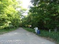 Home for sale: 465 96th St., Newaygo, MI 49337