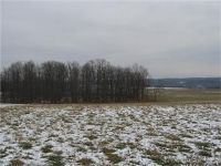 Home for sale: Federal Rd., Lot 1, Livonia, NY 14487