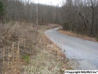 Home for sale: 0 County Rd. 166 (Citadel Rock Road), Fort Payne, AL 35967