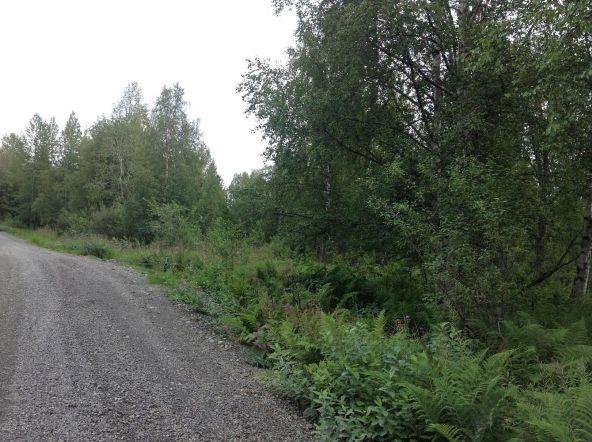 9738 E. Susitna Rd., Trapper Creek, AK 99683 Photo 1