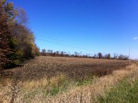 Home for sale: 0 State Rd. 49, Kouts, IN 46347