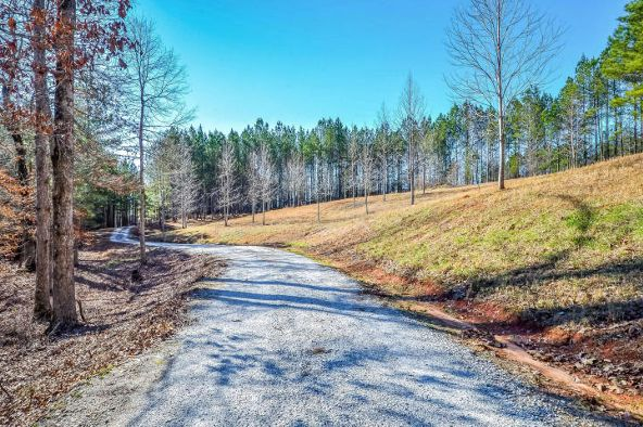 1227 Pine Rd., New Site, AL 36256 Photo 34