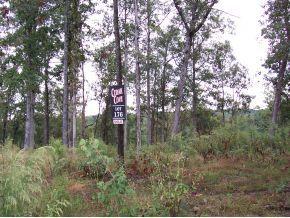 50 County Rd. 309, Crane Hill, AL 35053 Photo 6