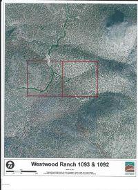 Home for sale: 1092&1093 Westwood Ranch Lot 1092 & 1093, Seligman, AZ 86337