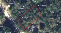 Home for sale: 108 Woodlawn Rd., Satsuma, FL 32189