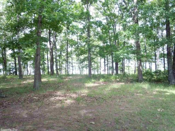 3304 Case Ford Rd., Heber Springs, AR 72543 Photo 2