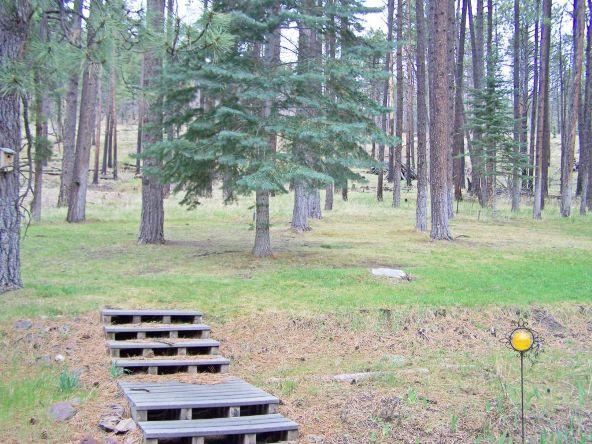 1 County Rd. 2153, Alpine, AZ 85920 Photo 16
