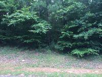 Home for sale: 1209 Grist Mill Dr., Phenix City, AL 36867