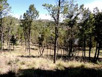 Home for sale: 317 Granite Dr., Ruidoso, NM 88345