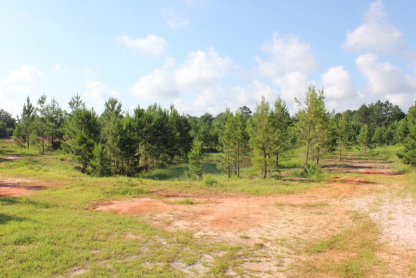 19815 County Rd. 12, Foley, AL 36535 Photo 16