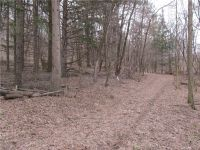 Home for sale: Lot 73 Drier, Durand, WI 54736