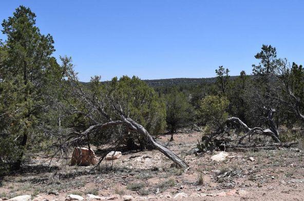 487 Sierra Verde Ranch, Seligman, AZ 86337 Photo 27