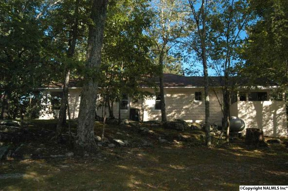 5783 Alabama Hwy. 117, Mentone, AL 35984 Photo 5