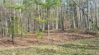 Home for sale: Pipers Ln., Buchanan, VA 24066