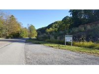 Home for sale: Tr 2 Hwy. 19-E., Roan Mountain, TN 37687