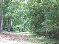 Home for sale: 999 Fox Ln., Heber Springs, AR 72543