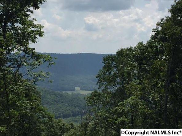3 South Bluff Trail, Huntsville, AL 35803 Photo 1