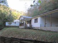Home for sale: 1 John Deer Dr., Logan, WV 25601