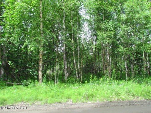 2011 W. Lake Lucille Dr., Wasilla, AK 99654 Photo 2