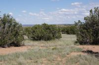 Home for sale: 3829 Petersen Rd., Snowflake, AZ 85937