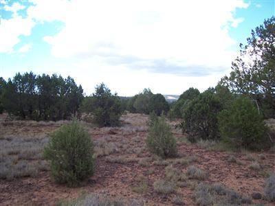 1805 W. Cumberland Parcel J Rd., Ash Fork, AZ 86320 Photo 20