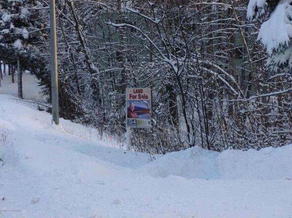 Tr A W. Northern Lights Blvd., Anchorage, AK 99517 Photo 4