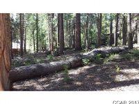 Home for sale: 333 Pomo Cir., Arnold, CA 95223