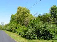 Home for sale: Stoneshire Dr., Highlandville, MO 65669