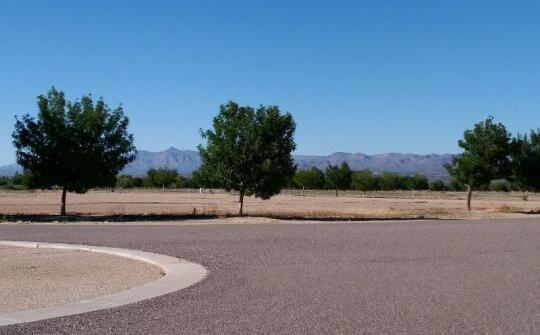 6520 W. Palo Verde Ln., Pima, AZ 85543 Photo 9