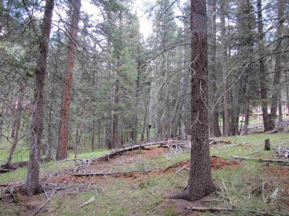 119 W. Pecos Canyon Estates Rd., Tererro, NM 87573 Photo 33