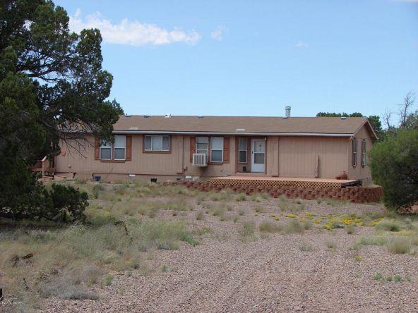 262 County Rd. 9215, Concho, AZ 85924 Photo 2