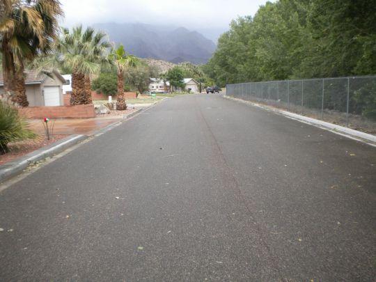 3423 E. Park Pl., Littlefield, AZ 86432 Photo 2
