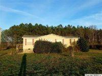 Home for sale: 4066 County Rd. 48, Cedar Bluff, AL 35959