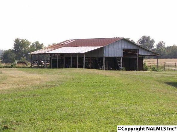 3372 County Rd. 52, Rogersville, AL 35652 Photo 16