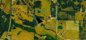 375 Greasy Creek, Salem, AR 72576 Photo 5