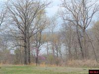 Home for sale: Lot 6 Lake Point Royale, Clarkridge, AR 72623
