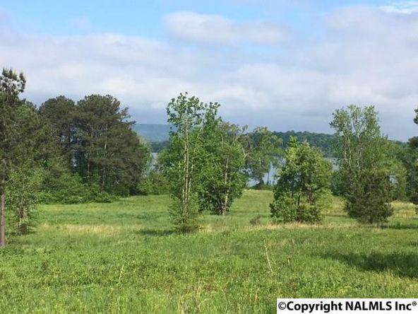 3 County Rd. 67, Langston, AL 35755 Photo 7