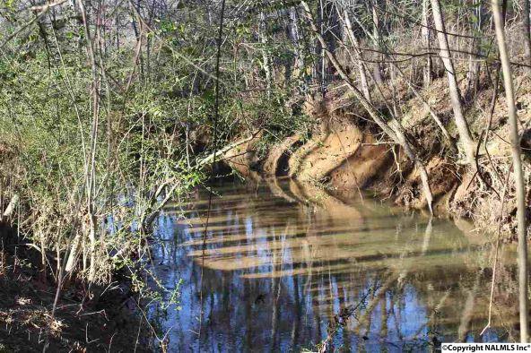 4807 Cove Creek Dr., Brownsboro, AL 35741 Photo 28