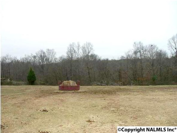 11619 Glass Hollow Rd., Athens, AL 35611 Photo 10