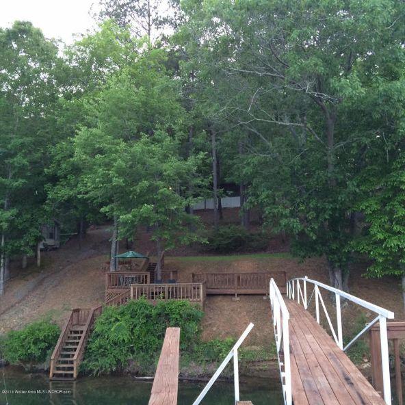 1953 County Rd. 330, Crane Hill, AL 35053 Photo 3