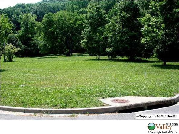 C Summerhill Dr., Guntersville, AL 35976 Photo 13