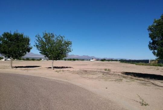 6565 W. Palo Verde Ln., Pima, AZ 85543 Photo 8