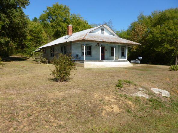 3221 County Hwy. 25, Guntersville, AL 35976 Photo 3