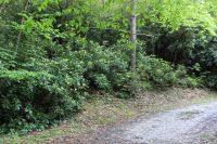 Home for sale: Lot#31 Valley View Dr., Nantahala, NC 28781