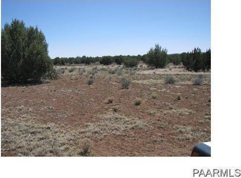 292 Sabrina, Ash Fork, AZ 86320 Photo 9