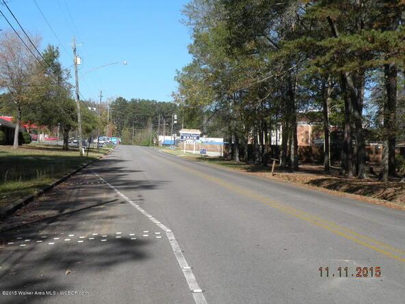 S. 3rd Ave., Jasper, AL 35501 Photo 4