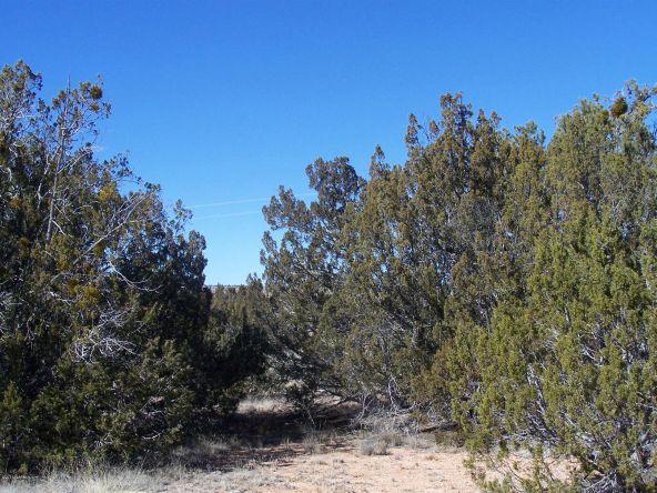 27145 W. Fort Rock Rd., Seligman, AZ 86337 Photo 9