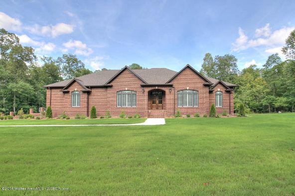 392 Harrison Shipman Rd., Jasper, AL 35503 Photo 7