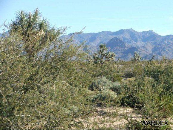 3529-D Arroyo Rd., Yucca, AZ 86438 Photo 21
