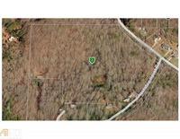 Home for sale: 301 Chestatee Pt, Dawsonville, GA 30534
